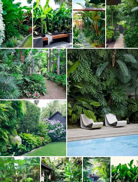 25 Top Tropical Garden Ideas in 2020 | Tropical garden ...