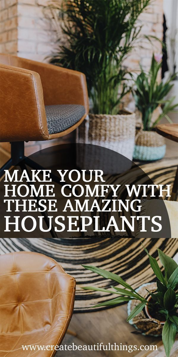 9 Indoor Plants for Your Home & Health #pflegeleichtepflanzen houseplants, plants, jasmine, lavender, snake plant, comfy, interior, designer #indoorplants