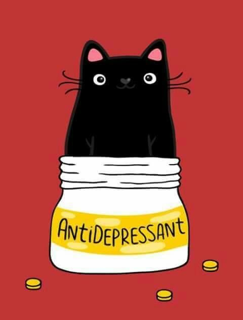 Black cat meme - cat's are like anti-depressants. #CatIdeas