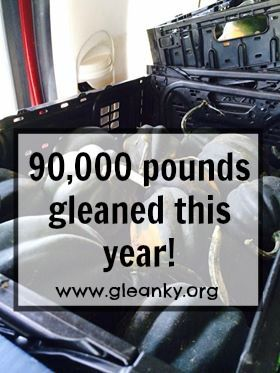 Whose the best gleaning organization in KY and is on track to glean over 200,000 pounds this year?!? We are! www.gleanky.org