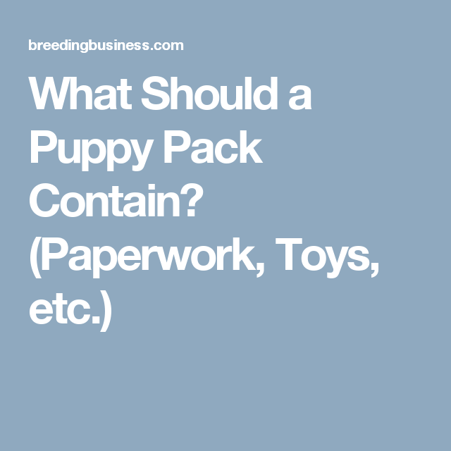 Prepare The Perfect Puppy Pack Toys Samples Puppies Puppy Litter Puppy Time