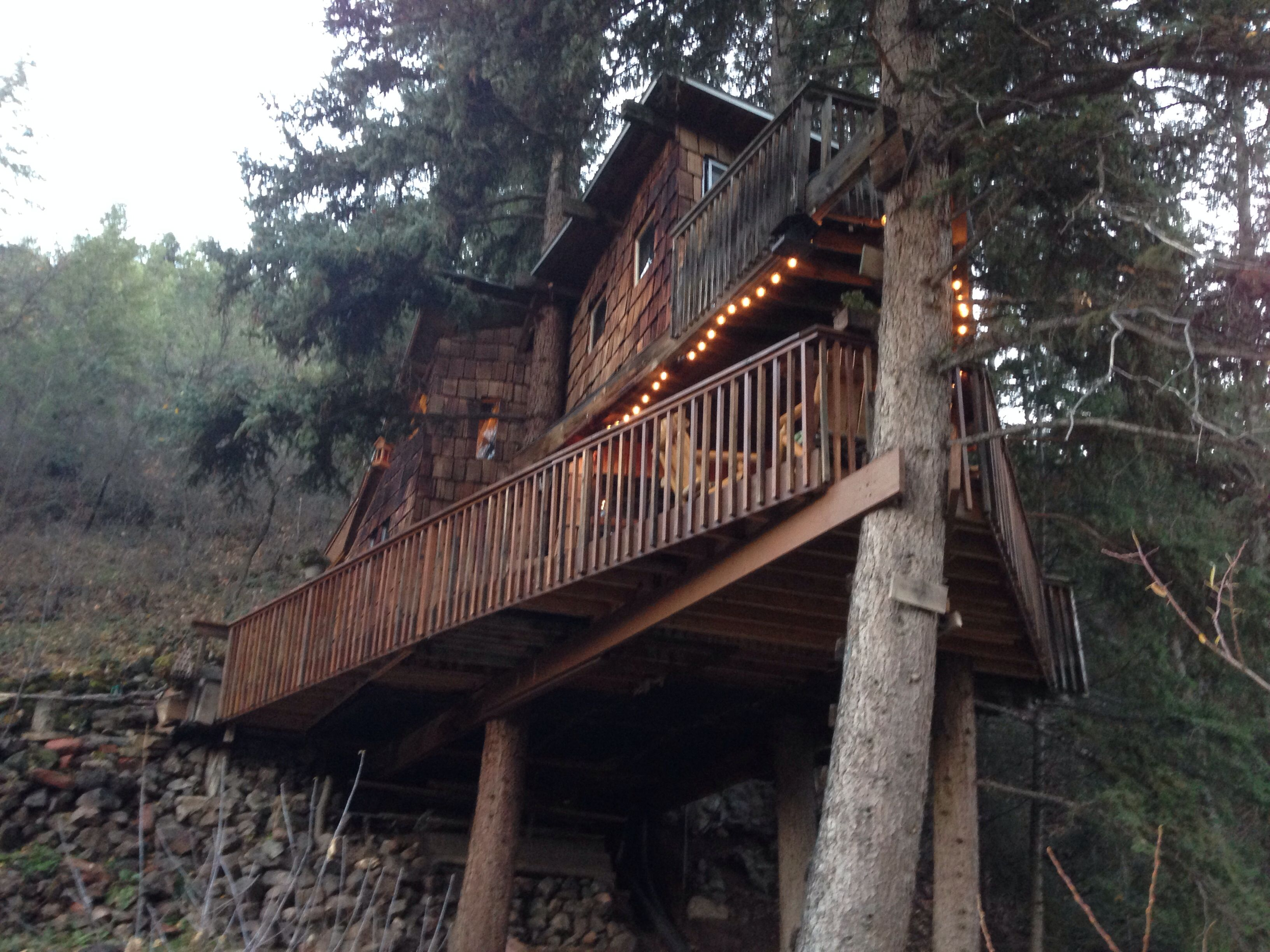 Treehouse in glenwood springs tree houses pinterest for Glenwood house