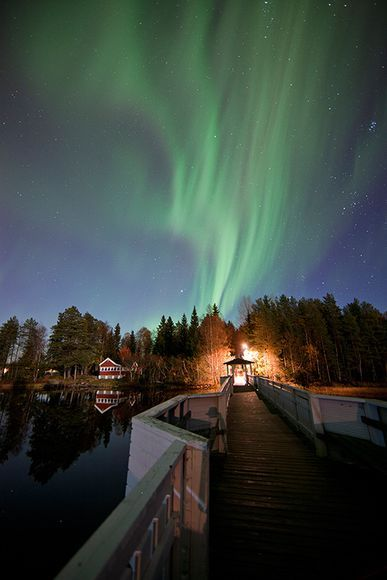 Aurora Borealis Umea Sweden This Is Where My Family Is