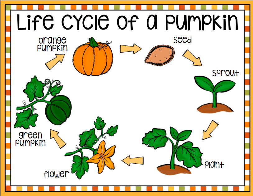 Fresh Ideas - It's Pumpkin Time! Circle time activities, Pumpkin books