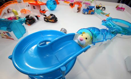 pets at home hamsters Google Search