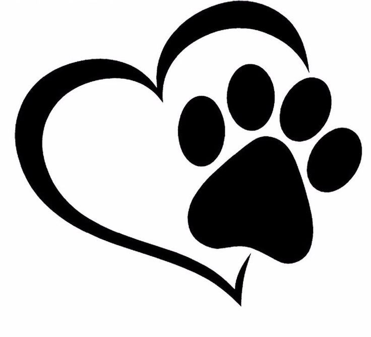 Paw Print And A Heart Car Decal Car Decal Heart Paw Print