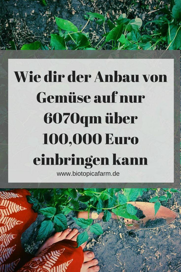 Die Rockstar-Farmer – Über 100 000 Euro jährlich auf nur 6070 qm und 3 Monate frei!