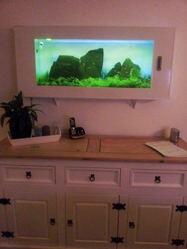 wall mounted iwagumi aquarium