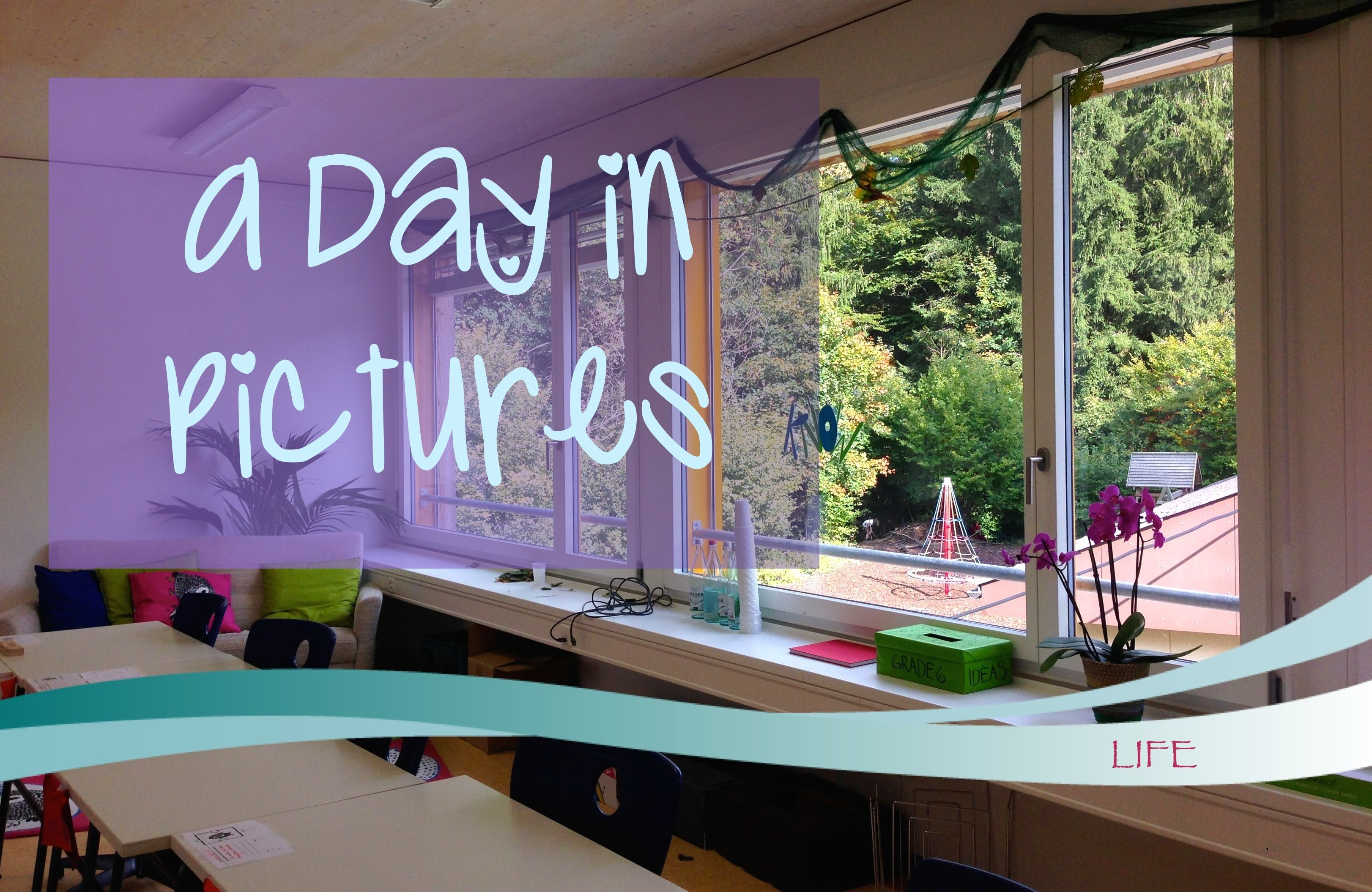 A Day in Pictures - http://skysbookcorner.blogspot.co.uk/2015/11/a-day-in-pictures.html - A typical day at school for me. #lbloggers