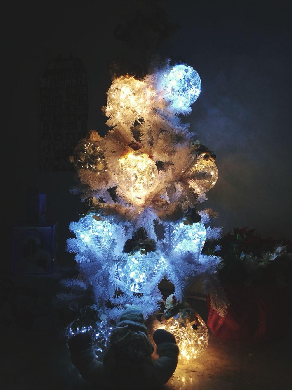 I pianeti luminosi - Maddalena il mondo magico di Madda