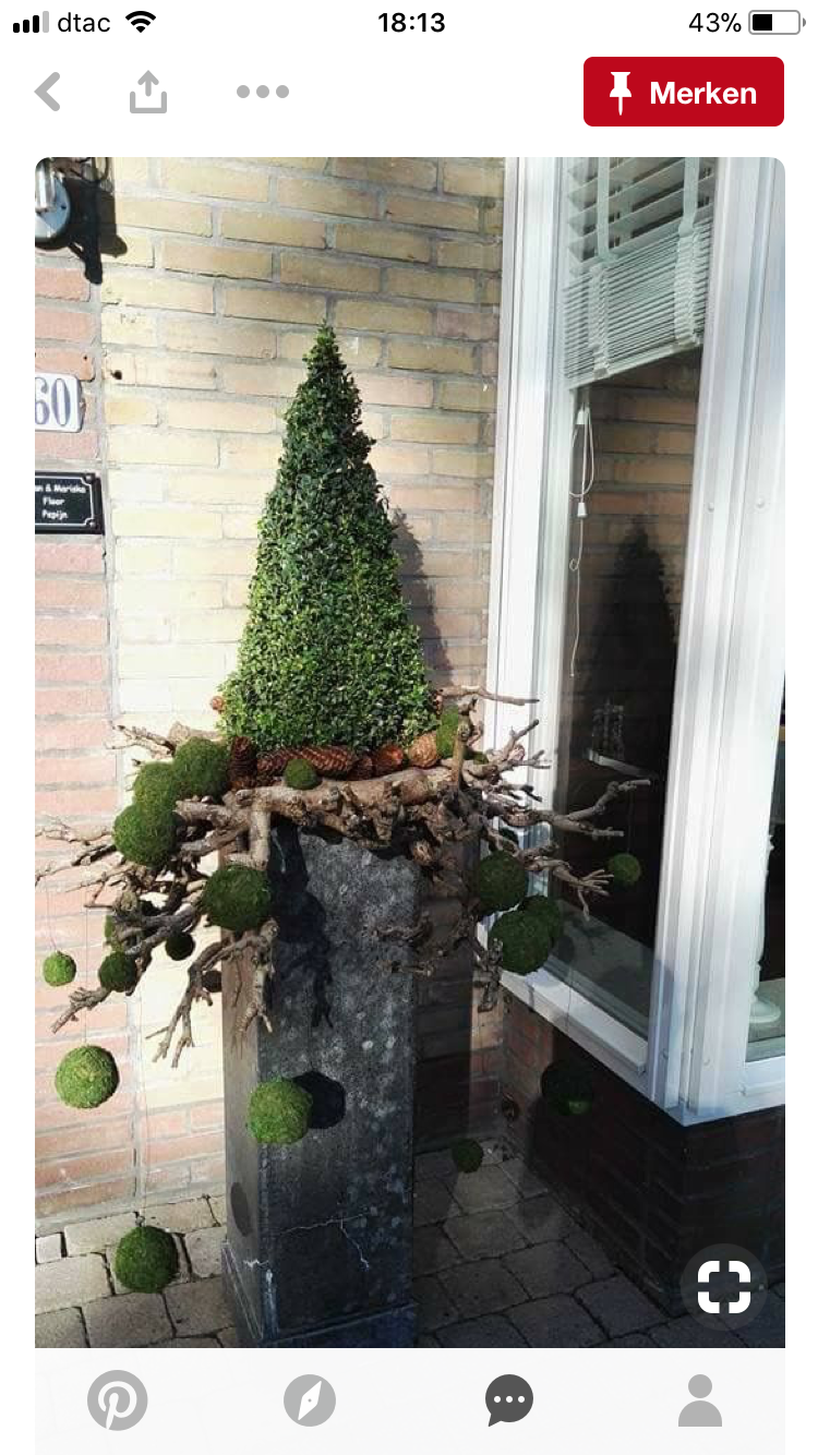 Pin By Patty Cakes On Gardening Outdoor Spaces Christmas