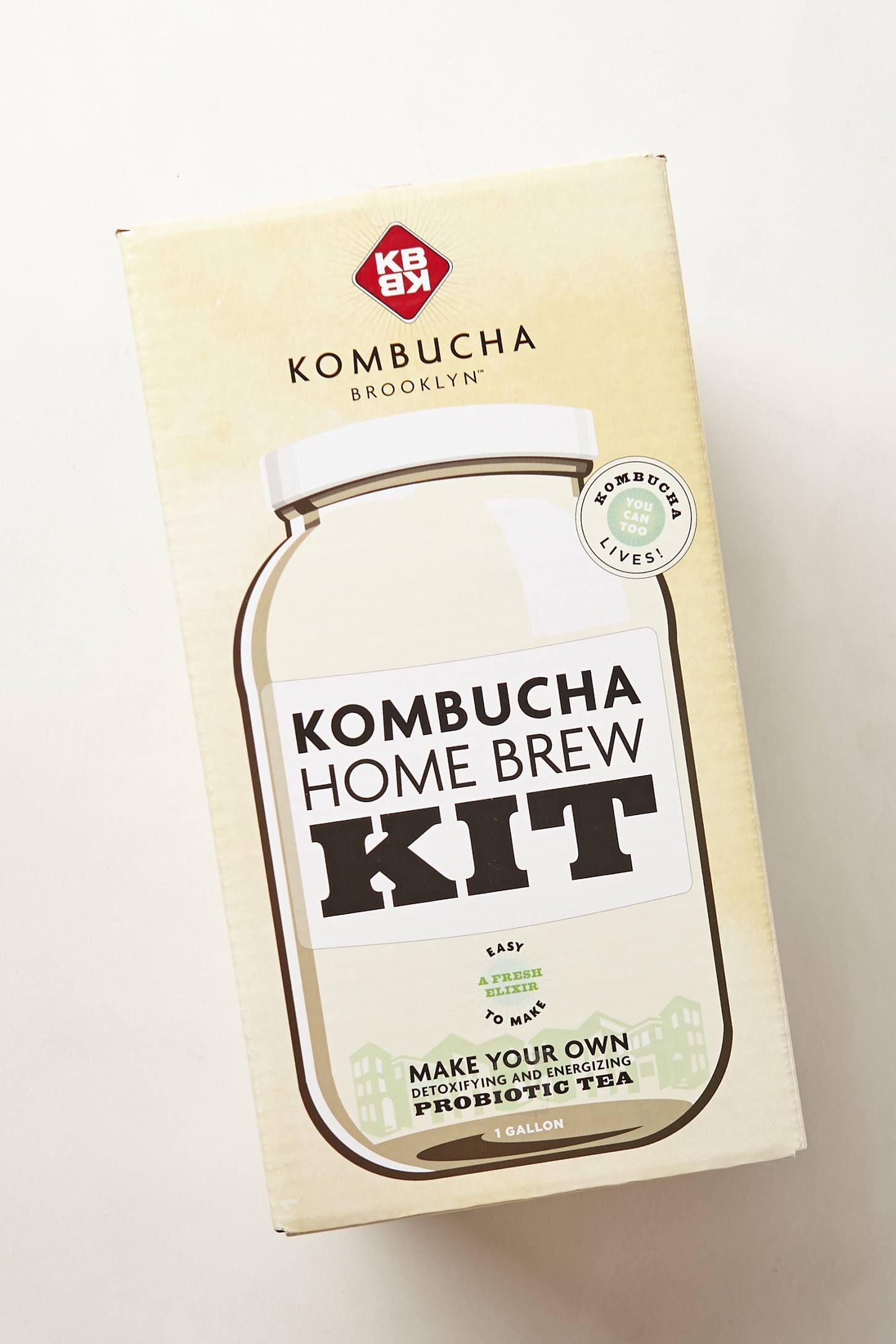 KBBK Kombucha Home Brew Kit - anthropologie.com | I have an idea ...