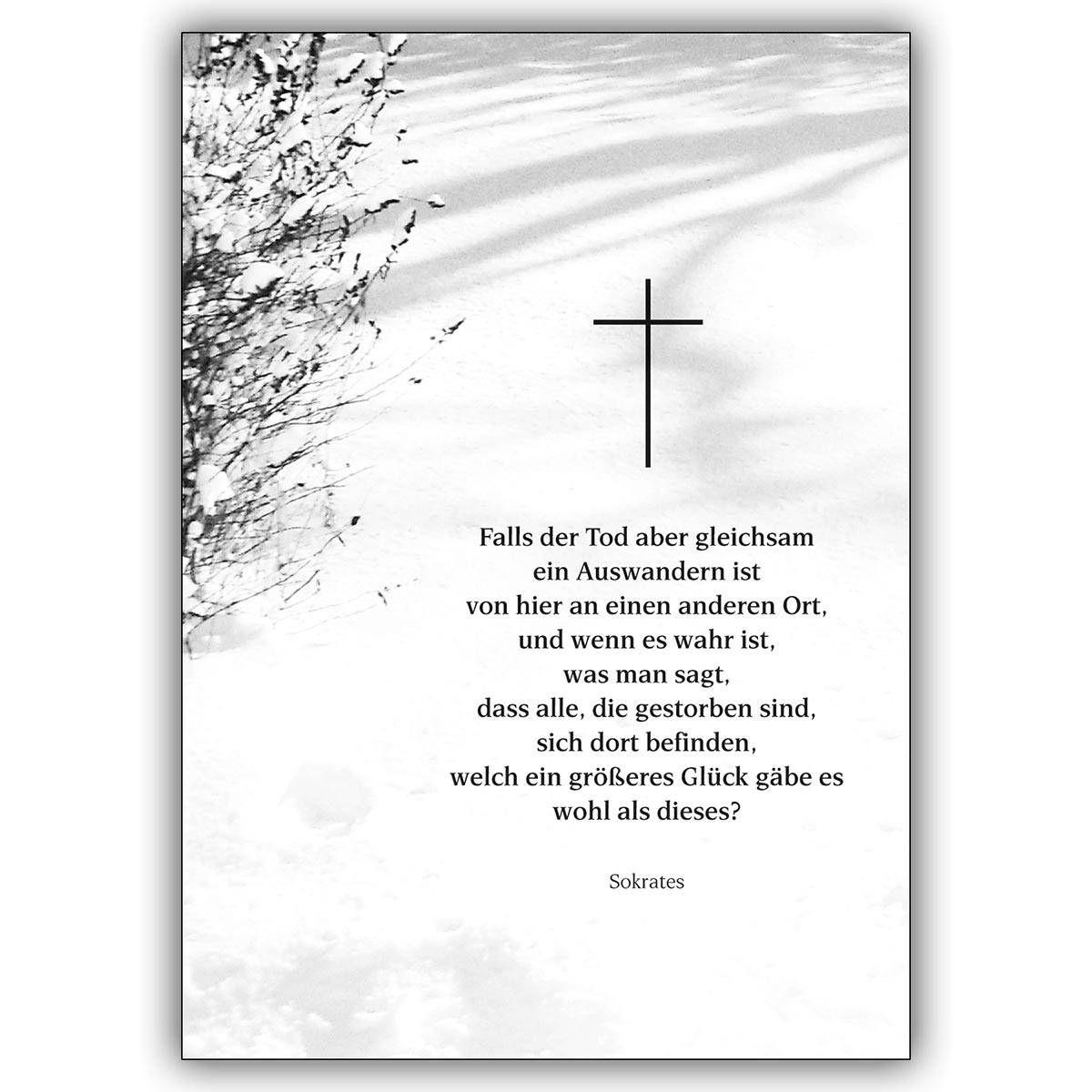 Beileidswunsche Fur Karten: Trauer Dankeskarten : Trauer Danke Karten