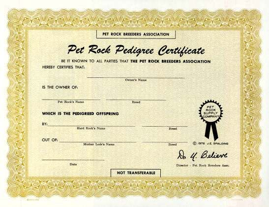 Pet Rock Certificate Rock Climbing Party Pinterest Certificate - fresh cat birth certificate free printable