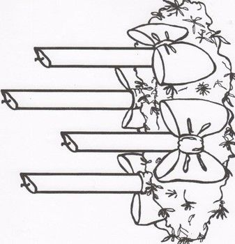 Advent Wreath for children to color. | Projects to Try ...