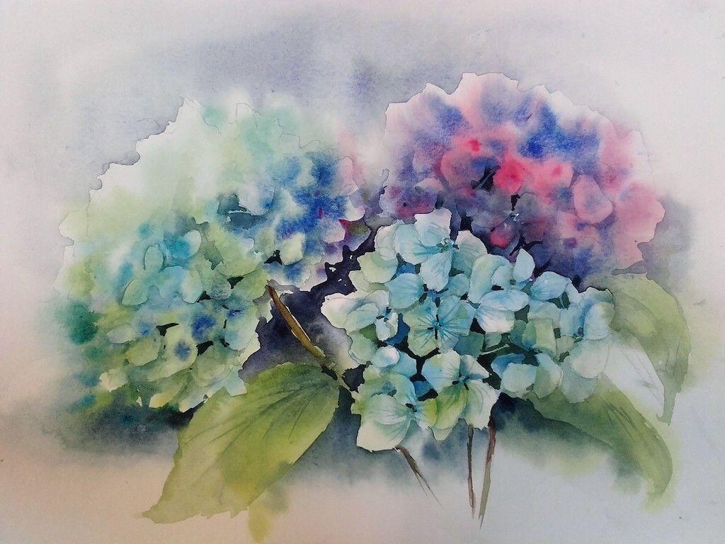 Aquarel Trio Hortensias30x40 Aquarelle Peinture Aquarelle