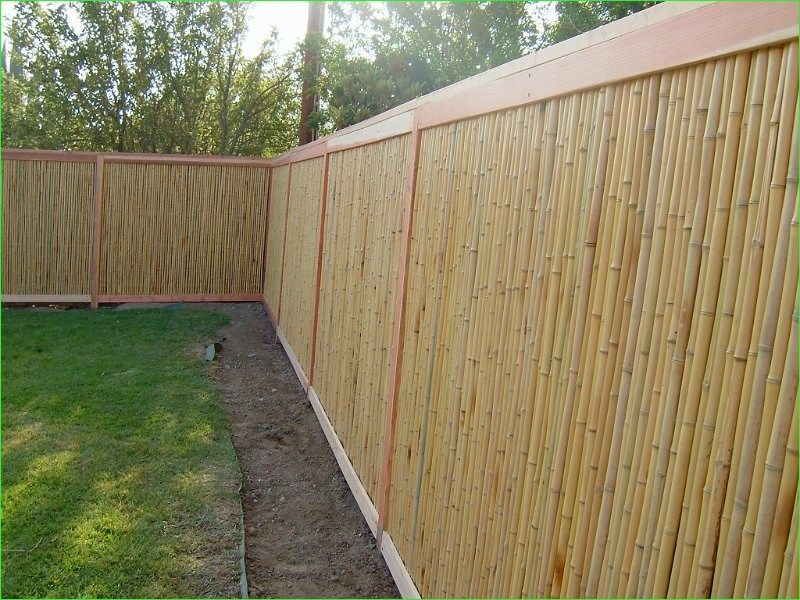 43 Awesome Bamboo Garden Fence Ideas That will Impress Your Gardens is part of Courtyard garden Fence - Visit Link for More Awesome Bamboo Garden Fence Ideas Ideas