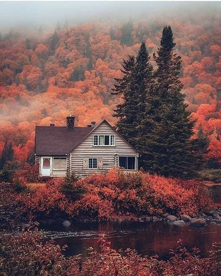 Beautiful Canada ! Cabins in the woods, Nature, Autumn