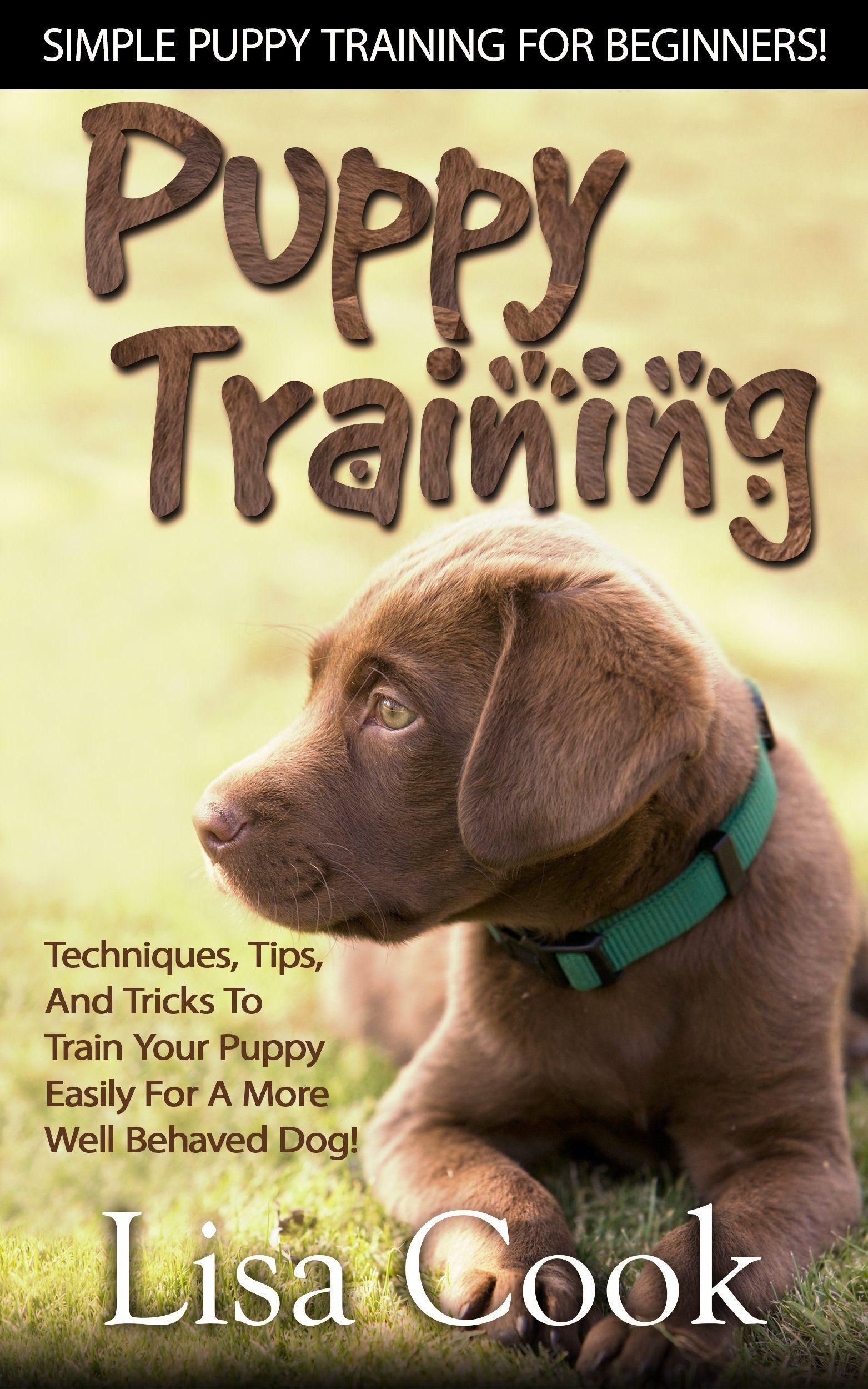 The Art Of Raising A Puppy Schedule Ideas