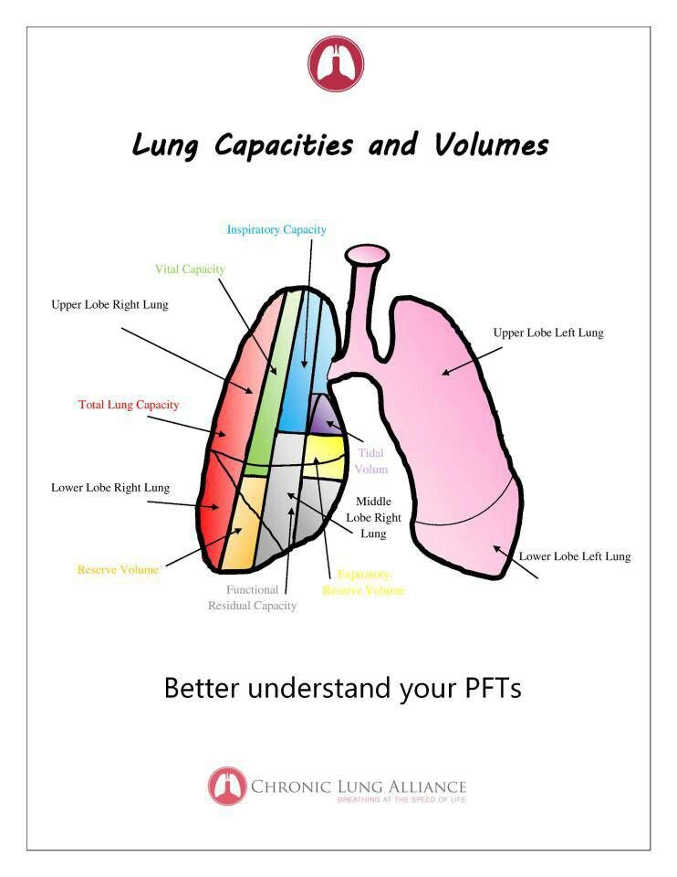 Lung Capacities And Volume Chart