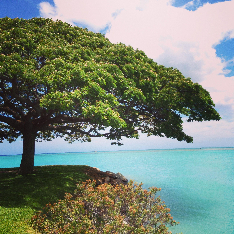 Pristine beach on Hickam Air Force base, Oahu, Hawaii. www