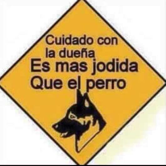 Teafundacion Cuidado Con La Duena Es Mas Jodida Que El Perro Http T Co 1vtb9tusao Twicsy Twitter Pictur Cuidado Con El Perro Frases Divertidas Perros