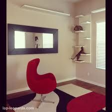 modern cat tree furniture - Ikea shelves!!