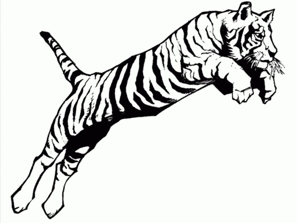 Tiger Color Sheet A Jumping Tiger Coloring Page Print For Kids