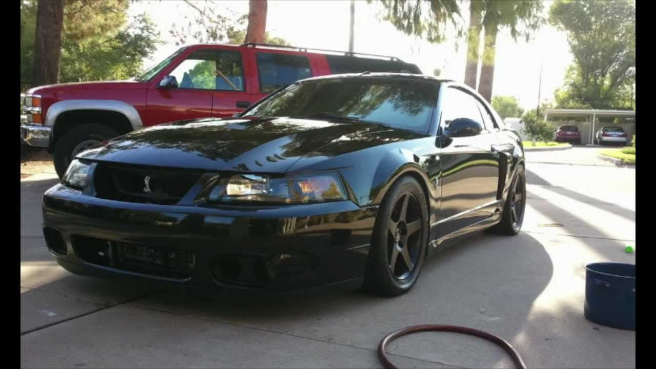 how a 2003 mustang cobra gets clean ground pounders pinterest 2003 mustang mustang cobra. Black Bedroom Furniture Sets. Home Design Ideas