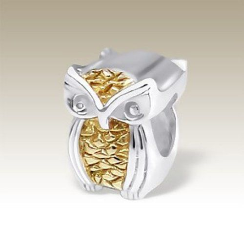 Owl Bead Charm, 2tone, 925 Sterling Silver for Charm Bracelet (E10880) PTN Silver Jewelry http://www.amazon.com/dp/B00JN3Q5JK/ref=cm_sw_r_pi_dp_yyvUvb15MRV4D