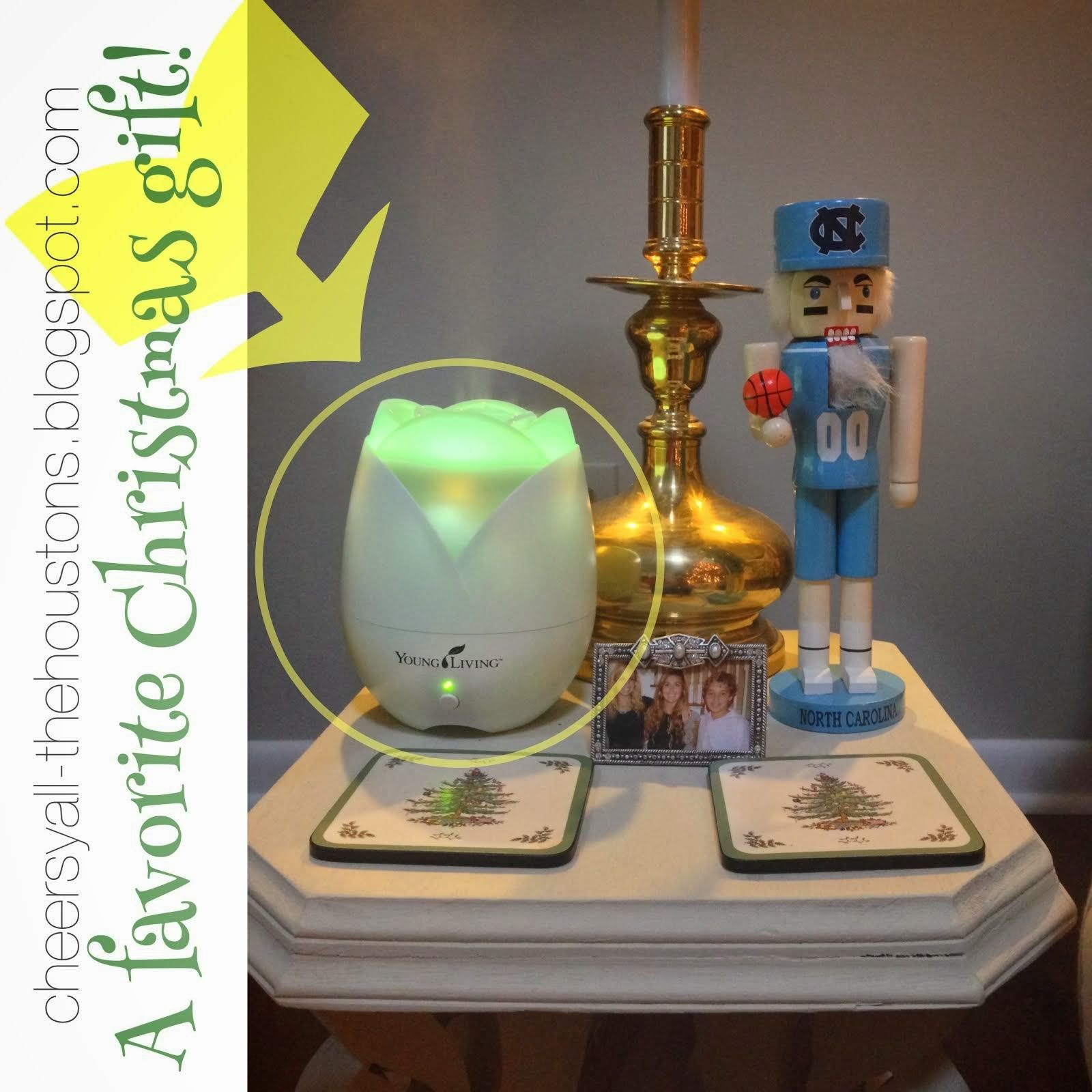 The best gift!! Humidifier, air purifier, atomizer, and