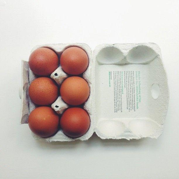 Min fars høns laver de fineste æg. #vscocam #Padgram