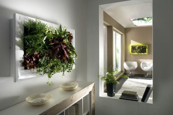 Verticale Tuin Binnen : Verticale tuin binnen google zoeken interieur pinterest tuin