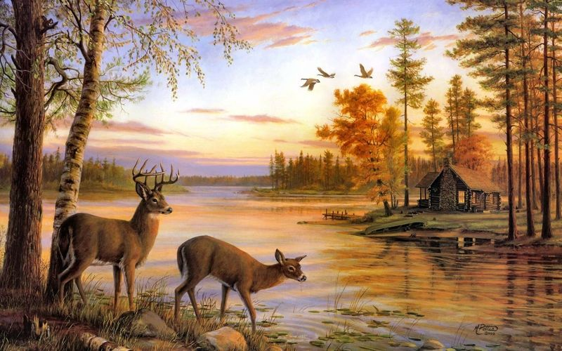 Drawings Nature Pictures Cabin And Deer Paintings Landscapes Nature Forest Birds Deer Artwork Cabin Lakes Deer Painting Deer Wallpaper Deer Art