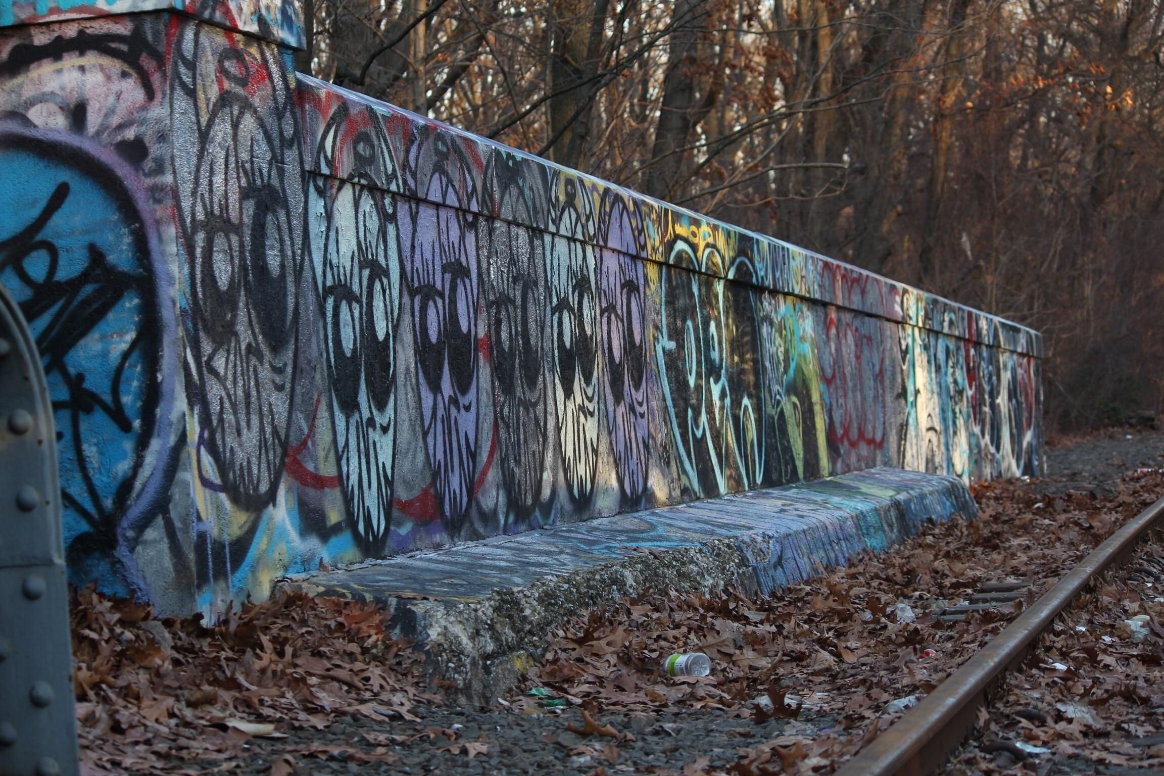 Graffiti wall in queens ny - Itap Of Graffiti Along Abandoned Track In Forest Park Queens Ny Http