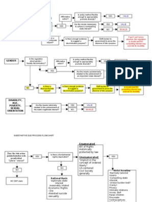 Con Law Flow Chart (EPC & DPC) | Notes | Judicial review
