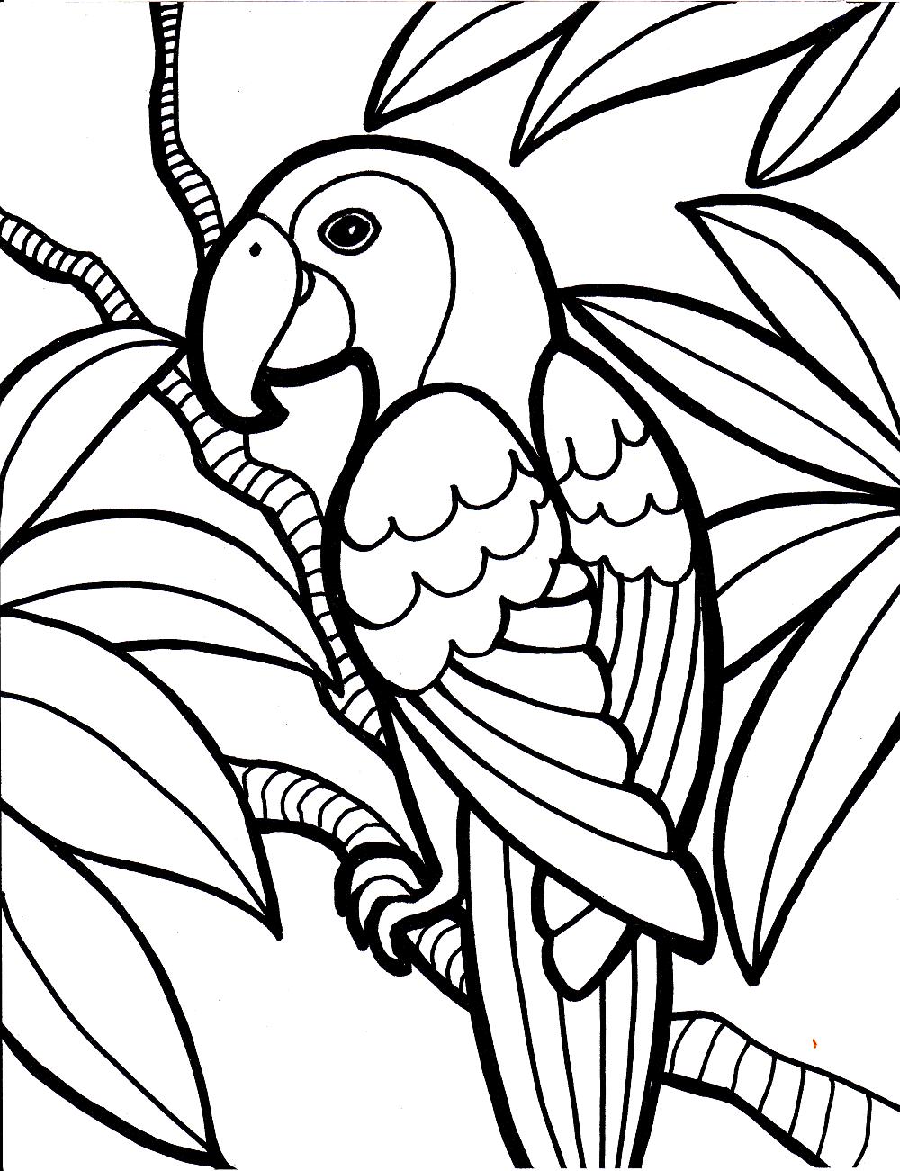Encantador Loro Para Colorear Imprimible Fotos - Dibujos Para ...
