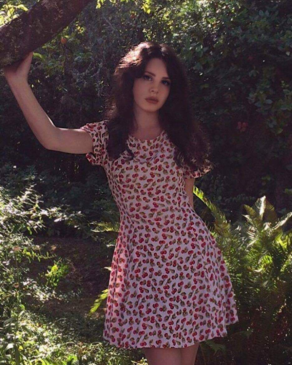 Ana Del Rey Cherry Dress Ldr Lana Del Rey Outfits Lana Del Rey Celebrities