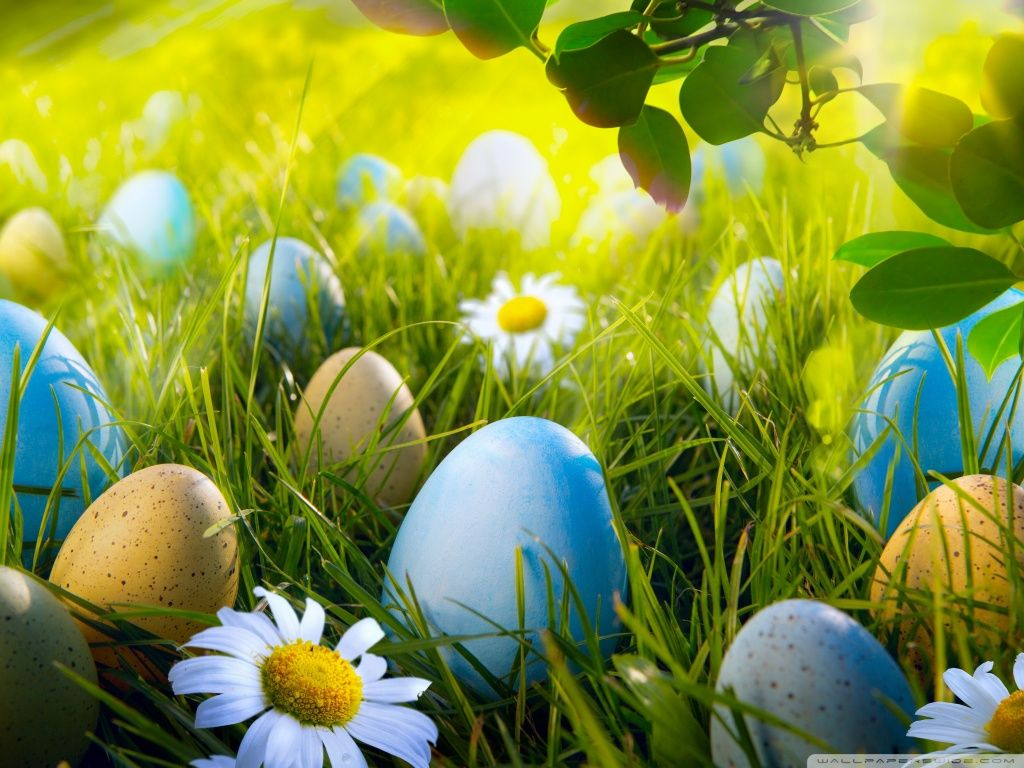 Download Free 15 Easter Hd Wallpaper Free Hd Wallpapers Part 5 Easter Wallpaper Happy Easter Wallpaper Easter Backgrounds