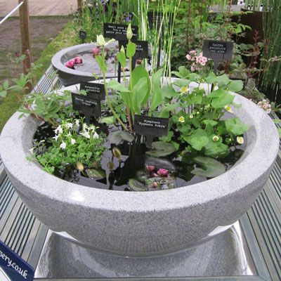 Contgranite2 Jpg 400 400 Container Water Gardens Container Pond Container Gardening