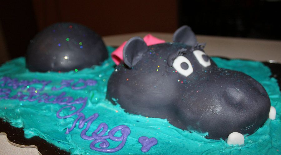 Incredible Happy Happy Hippo Birthday Cake By Picworth1000Wrds Deviantart Com Personalised Birthday Cards Akebfashionlily Jamesorg