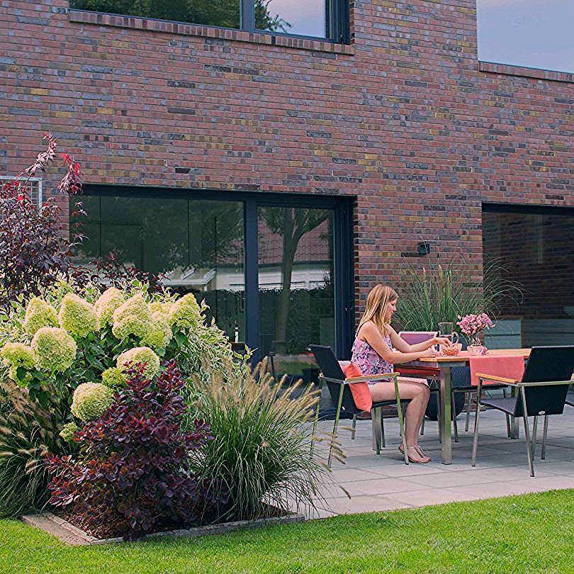 Photo of Sichtschutz – Terrasse 2 – nachher – Franks kleiner Garten – My Blog