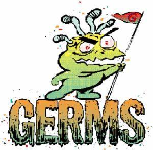 Diy Chemical Free Hand Purifier Germ Antibacterial Soap Sanitizer