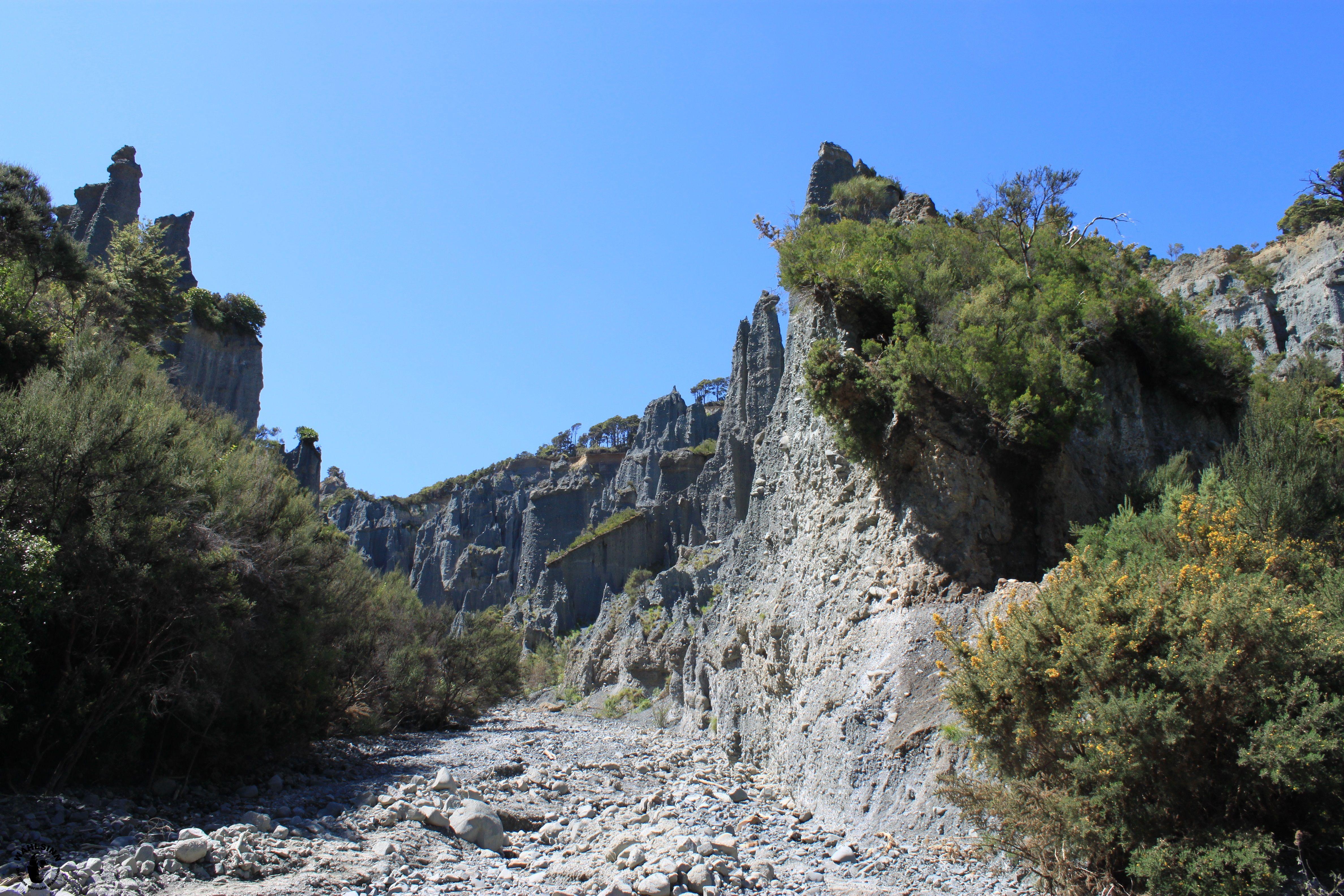 Auf den Pfad von Aragorn, Gimli und Legolas (Neuseeland)