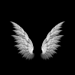 About This Blog Laura Simply Stumbling Cool Black Wallpaper Black Background Wallpaper Wings Wallpaper