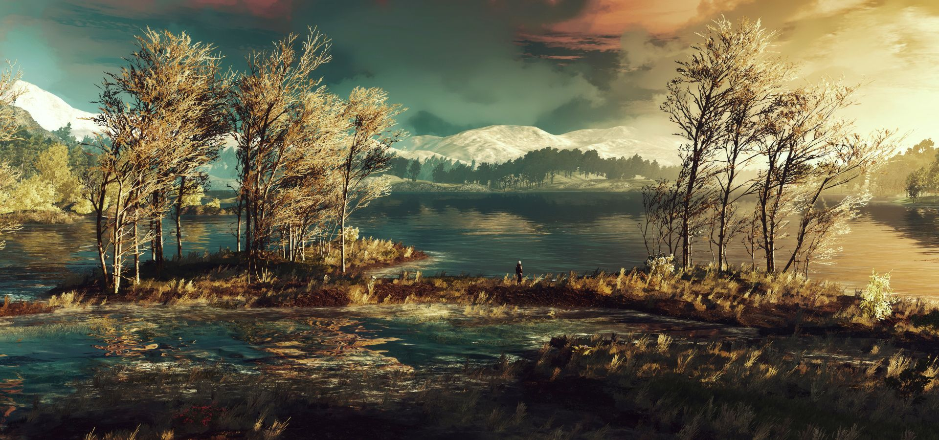 Vídeo Game The Witcher 3: Wild Hunt Papel de Parede | The Witcher