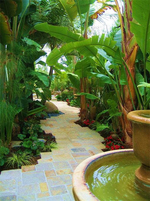 Narrow side yard solution: meandering path and really tall skinny plants gives illusion of width. #sideyards