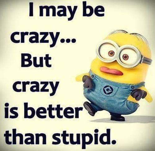 Quotes About People Who Notice: Pin By Funnydvm. Com On Funny Minions Pictures Of The Week