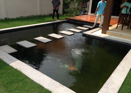 Modern Pond Thai Garden Garden Pond Design Ponds Backyard Pond