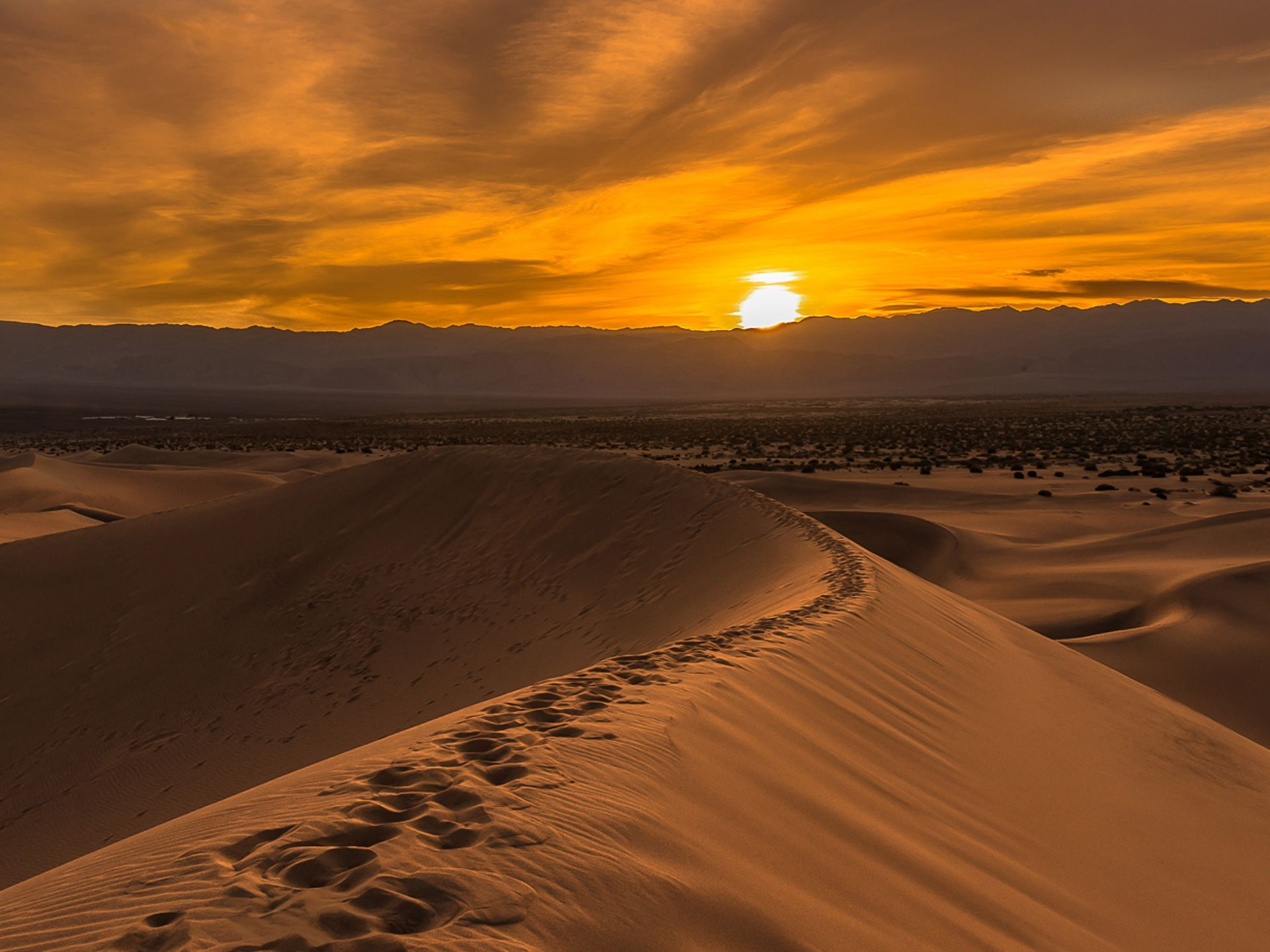A bright golden sunset in Mesquite Flat Sand Dunes,
